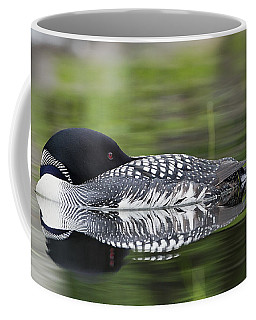 Resting Loon Coffee Mug