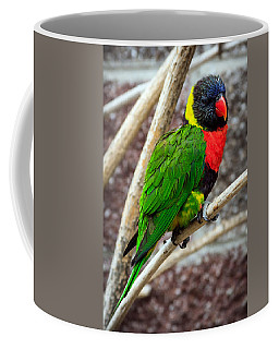 Coffee Mug featuring the photograph Resting Lory by Sennie Pierson