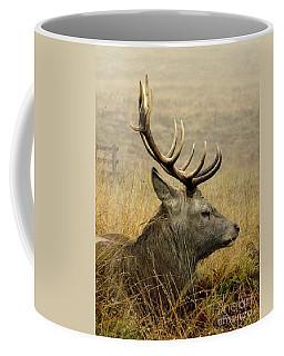 Resting Stag Coffee Mug by Linsey Williams