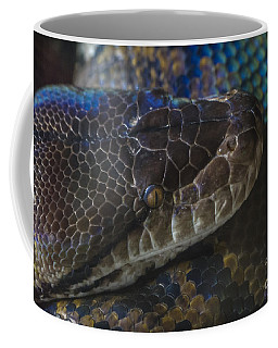 Reticulated Python With Rainbow Scales Coffee Mug