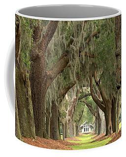 Retreat Avenue Of The Oaks Coffee Mug