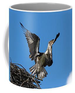 Returning To The Nest Coffee Mug