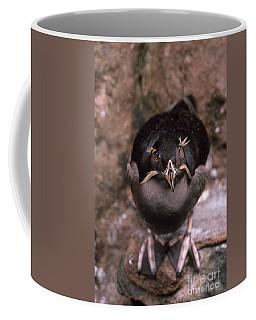 Rhinoceros Auklet Coffee Mug