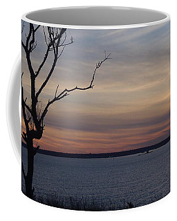 Rhode Island Sunset Coffee Mug by Robert Nickologianis