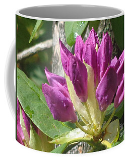 Rhodo Buds N Raindrops Coffee Mug