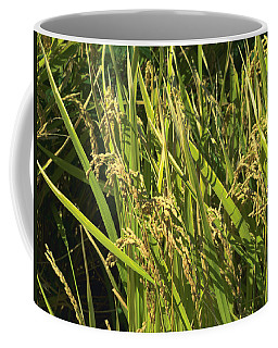 Coffee Mug featuring the photograph Rice by Rachel Mirror