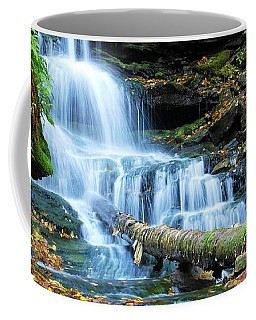 Ricketts Glen Hidden Waterfall Coffee Mug