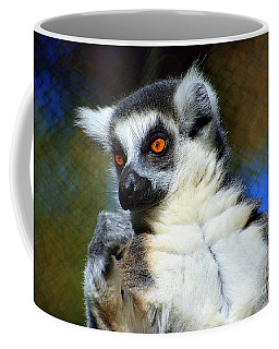 Coffee Mug featuring the photograph Ring-tailed Lemur by Lisa L Silva