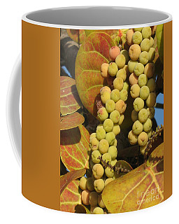 Coffee Mug featuring the photograph Ripe Seagrapes by Christiane Schulze Art And Photography