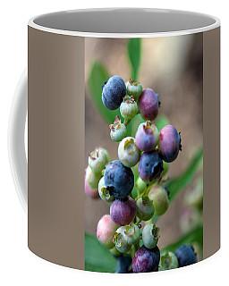 Ripening Blueberries Coffee Mug by John Haldane