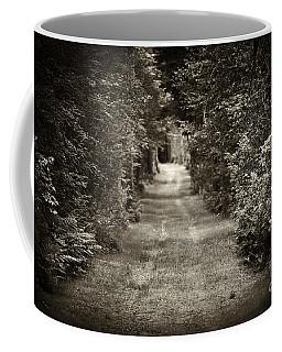 Road Through Forest Coffee Mug
