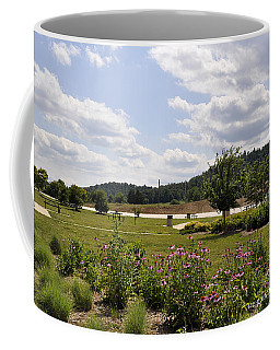 Coffee Mug featuring the photograph Road Trip 2012 #2 by Verana Stark