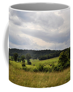 Coffee Mug featuring the photograph Road Trip 2012 by Verana Stark