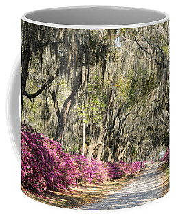 Road With Azaleas And Live Oaks Coffee Mug