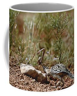 Roadrunner With Snake Coffee Mug
