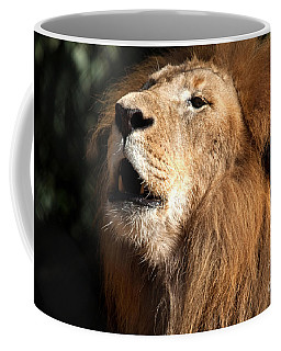 Coffee Mug featuring the photograph Roar - African Lion by Meg Rousher