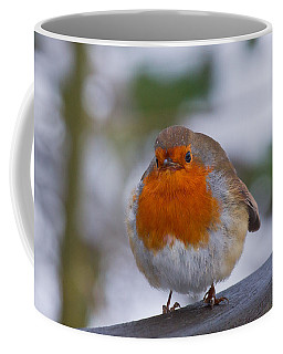 Robin 1 Coffee Mug