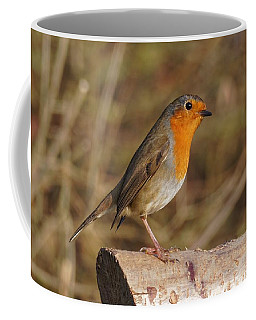 Coffee Mug featuring the photograph Robin On A Log -2 by Paul Gulliver
