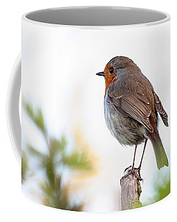 Robin On A Pole Coffee Mug