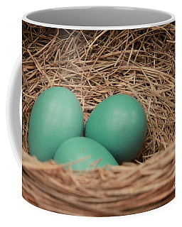 Robins Three Blue Eggs Coffee Mug