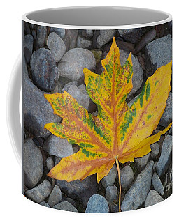 Coffee Mug featuring the photograph Rock Creek Leaf by Chalet Roome-Rigdon