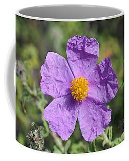 Rockrose Flower Coffee Mug