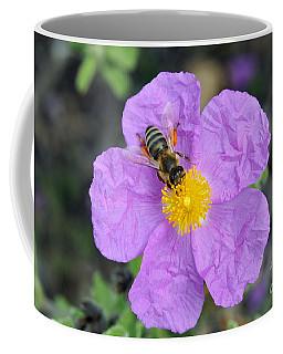 Rockrose Flower With Bee Coffee Mug