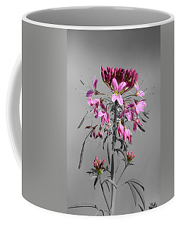 Rocky Mountain Bee Plant Sc Coffee Mug