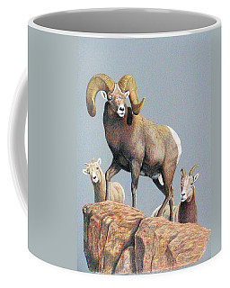 Rocky Mountain Ram Ewe And Lamb Coffee Mug
