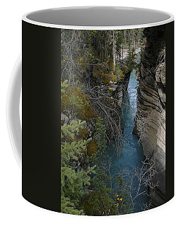 Rocky Mountain Wonder Coffee Mug