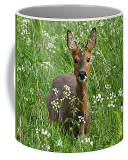 Coffee Mug featuring the photograph Roe Doe Early Summer by Phil Banks