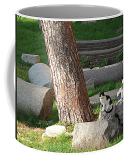 Coffee Mug featuring the photograph Roman Beauty by Evelyn Tambour
