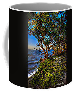 Rooted In Truth Coffee Mug