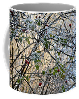 Coffee Mug featuring the painting Rosa Canina  by Felicia Tica
