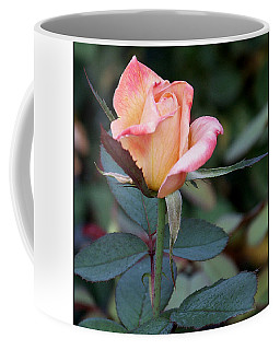 Coffee Mug featuring the photograph Pink Rose Bloom  by James C Thomas