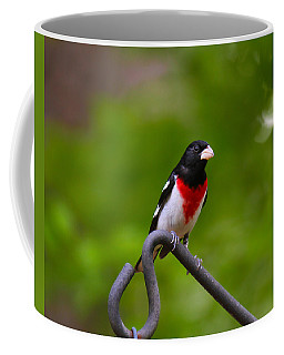 Rose Breasted Grosbeak Coffee Mug