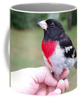 Coffee Mug featuring the photograph Rose Breasted by Mim White