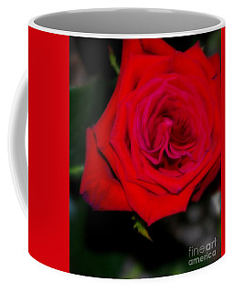 Special Rose For  Valentines Day. Rose. Hearts Coffee Mug by Oksana Semenchenko