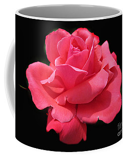 Coffee Mug featuring the photograph Rose Is A Rose by Judy Palkimas