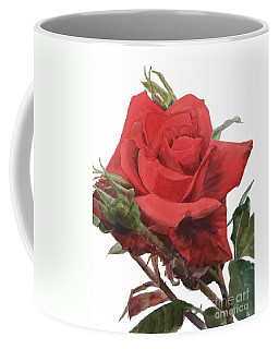 Watercolor Of A Single Red Rose On A Stem With Buds I Call Rose Jake Coffee Mug