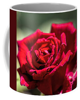 Coffee Mug featuring the photograph Rose by Leif Sohlman