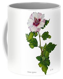 Rose Of Sharon - Hibiscus Syriacus Coffee Mug