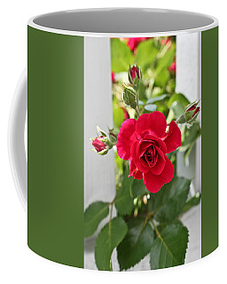 Coffee Mug featuring the photograph Roses Are Red by Joann Copeland-Paul