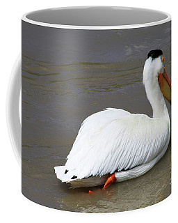 Coffee Mug featuring the photograph Rough Billed Pelican by Alyce Taylor