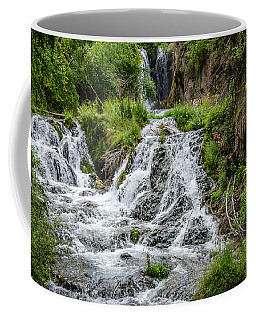 Roughlock Falls South Dakota Coffee Mug