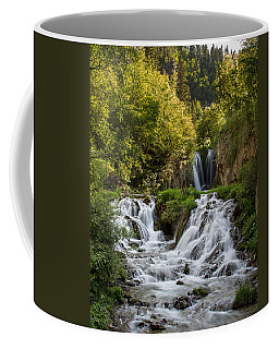 Coffee Mug featuring the photograph Roughlock Falls South Dakota by Patti Deters