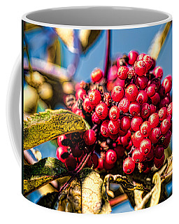 Rowan Berries Coffee Mug by Leif Sohlman
