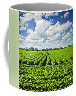 Rows Of Soy Plants In Field Coffee Mug