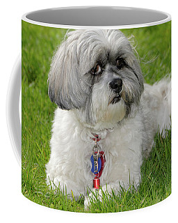 Coffee Mug featuring the photograph Roxey Glamour by Arthur Fix