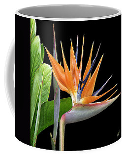 Royal Beauty I - Bird Of Paradise Coffee Mug by Ben and Raisa Gertsberg